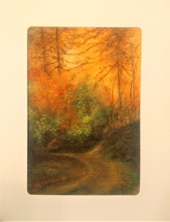 Sunshine through the Trees Card